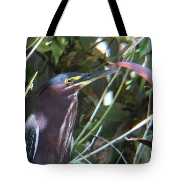 Heron With Yellow Eyes Tote Bag by Val Oconnor
