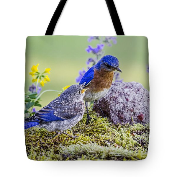 Hey Dad I'm Hungry Tote Bag