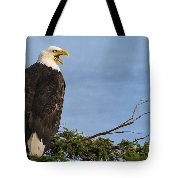 Tote Bag featuring the photograph Hey by Gary Lengyel