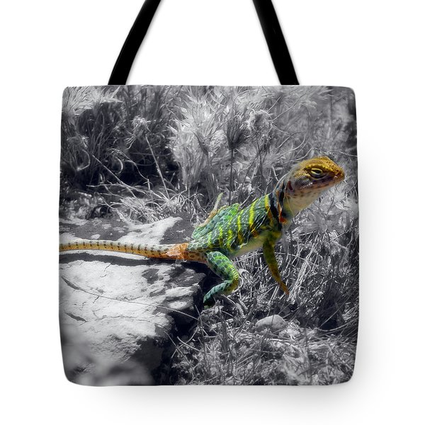 Hey, I'm Posing Here Tote Bag by Charles Ables