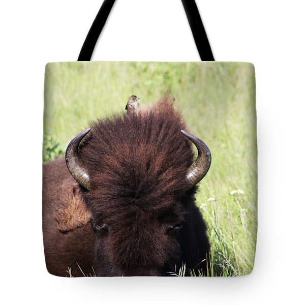Tote Bag featuring the photograph Hey There Is A Bird On Your Head by Alyce Taylor