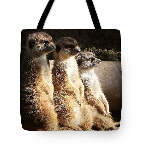 Hey What's Up? Tote Bag