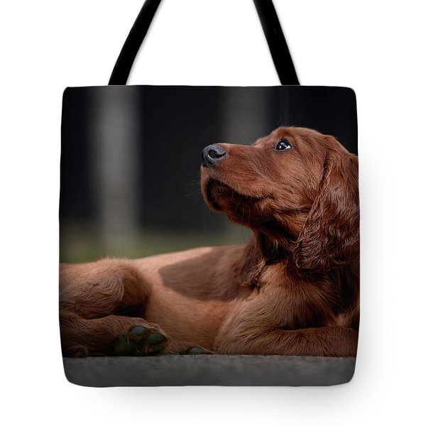 Hey You Tote Bag