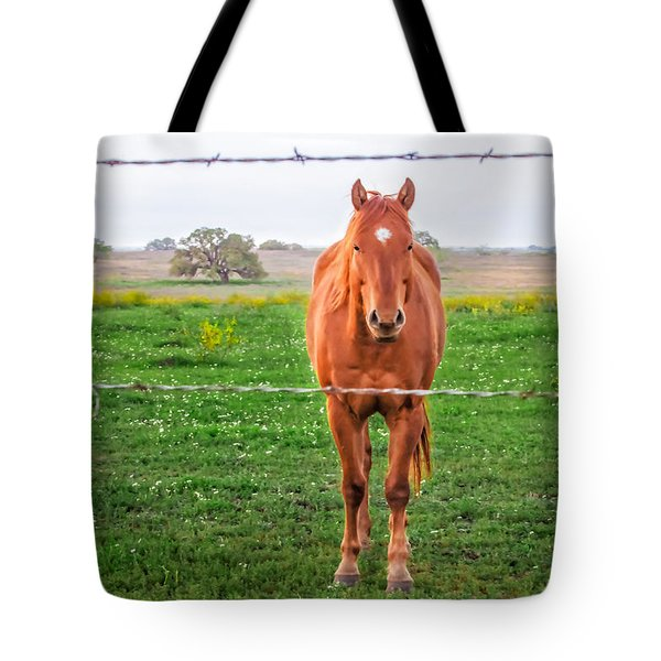 Tote Bag featuring the photograph Hey You - Ya You by Melinda Ledsome