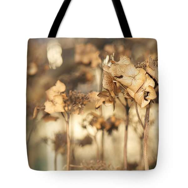 Tote Bag featuring the photograph Hibernating Beautifully by Lisa Knechtel