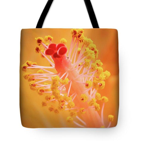 Hibiscus-1 Tote Bag