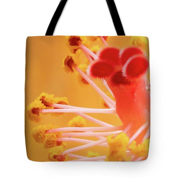 Hibiscus-2 Tote Bag