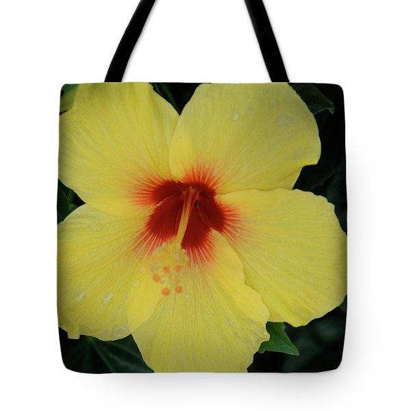 Sun Lover Hibiscus Tote Bag