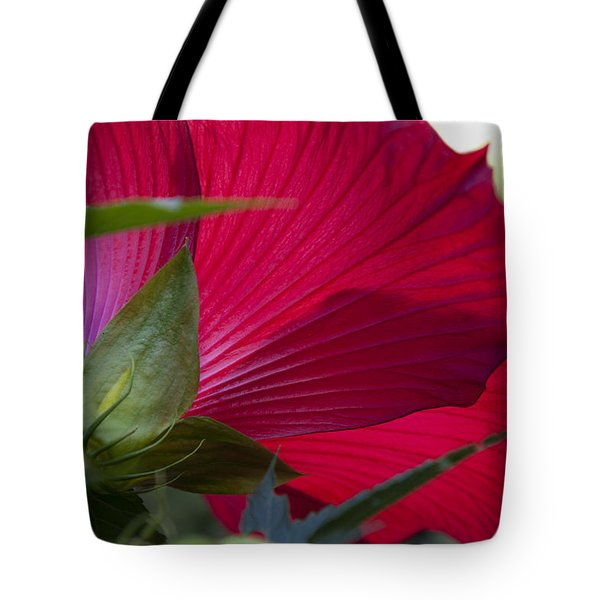 Tote Bag featuring the photograph Hibiscus by Charles Harden