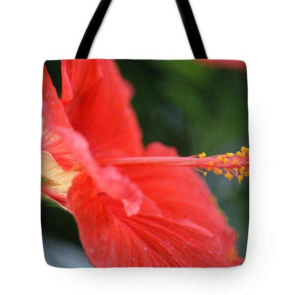 Hibiscus Closeup Tote Bag