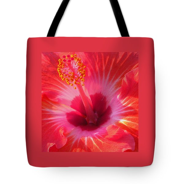 Tote Bag featuring the photograph Hibiscus - Coral And Pink Square by Kerri Ligatich