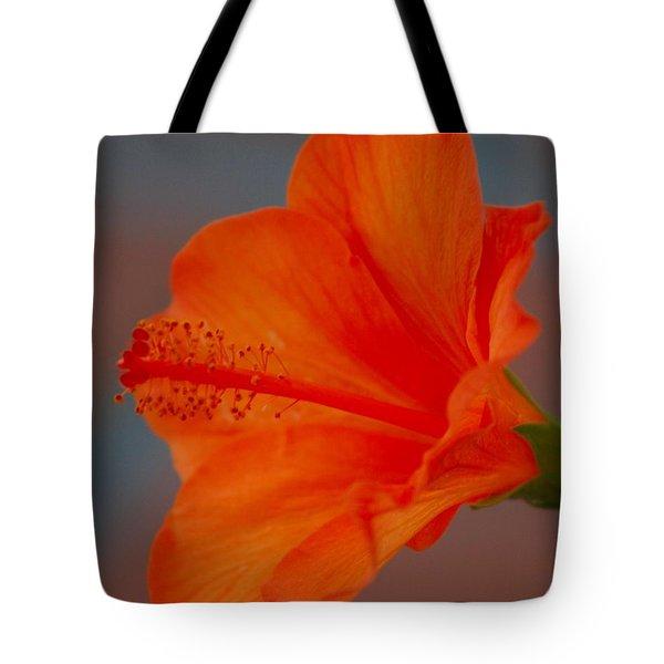 Hot Orange Hibiscus Tote Bag