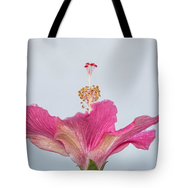 Hibiscus Looking Upward Tote Bag