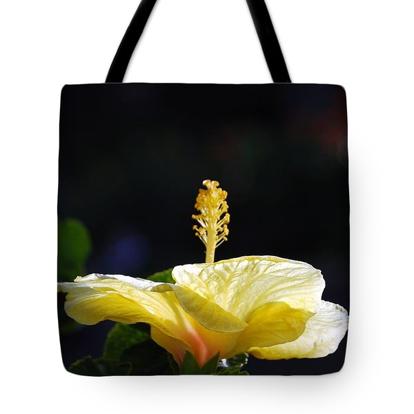Tote Bag featuring the photograph Hibiscus Morning by Debbie Karnes