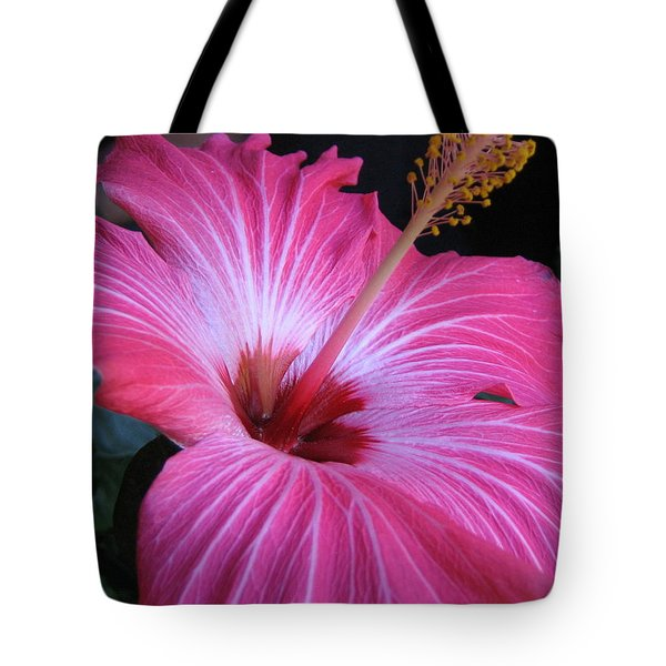 Tote Bag featuring the photograph Hibiscus Photograph by Barbara Yearty