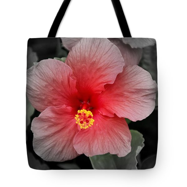 Hibiscus Red And Black Tote Bag