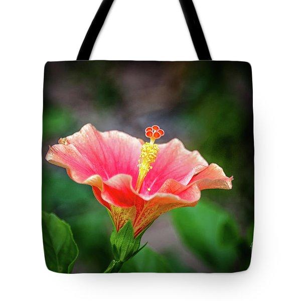 Hibiscus Rosa Sinensis Tote Bag