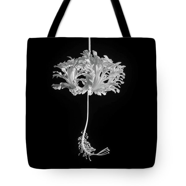 Hibiscus Schizopetalus Against A Black Background In Black And White Tote Bag