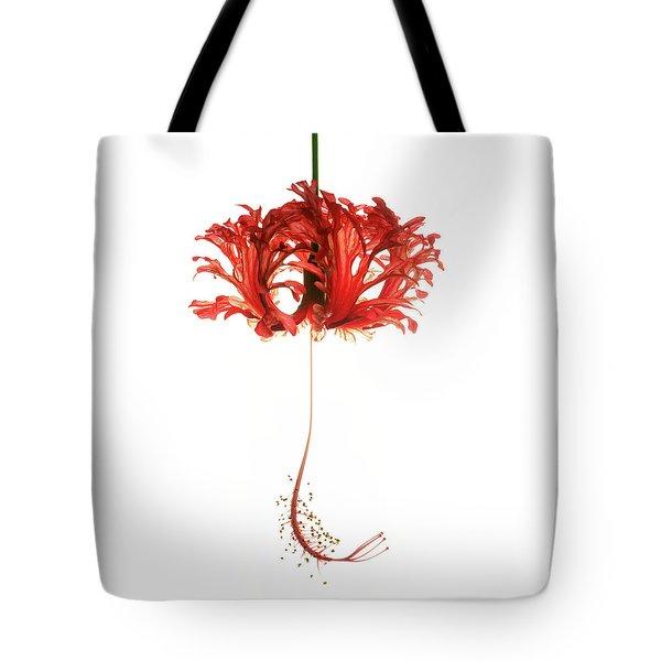 Hibiscus Schizopetalus On White Tote Bag
