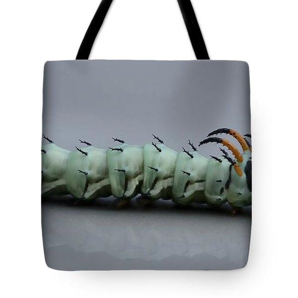 Hickory Horned Devil Tote Bag