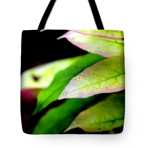 Hickory Leaf Tote Bag