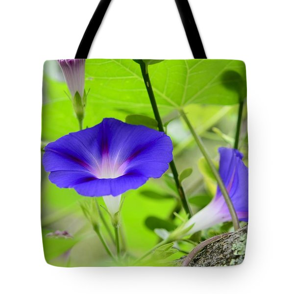 Tote Bag featuring the photograph Hidden Beauty by Corinne Rhode