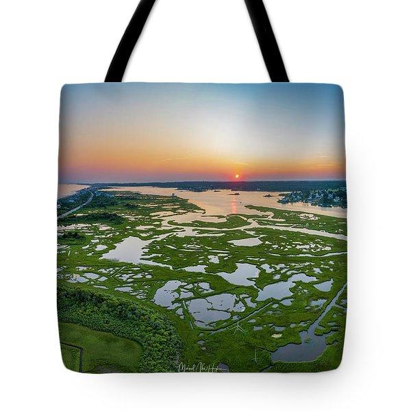 Hidden Beauty Pano Tote Bag
