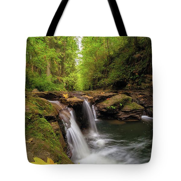 Hidden Falls At Rock Creek Tote Bag by David Gn