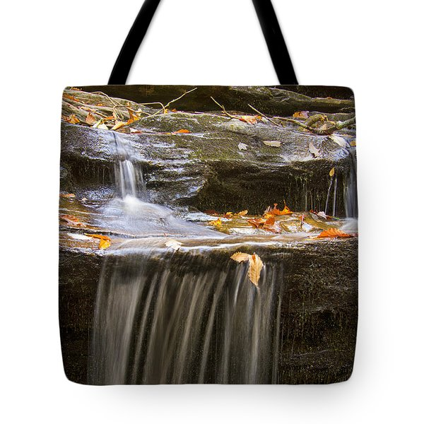 Hidden Falls Detail Tote Bag