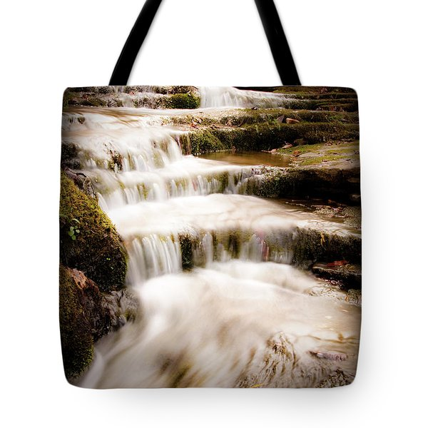 Hidden Falls Tote Bag by Tamyra Ayles