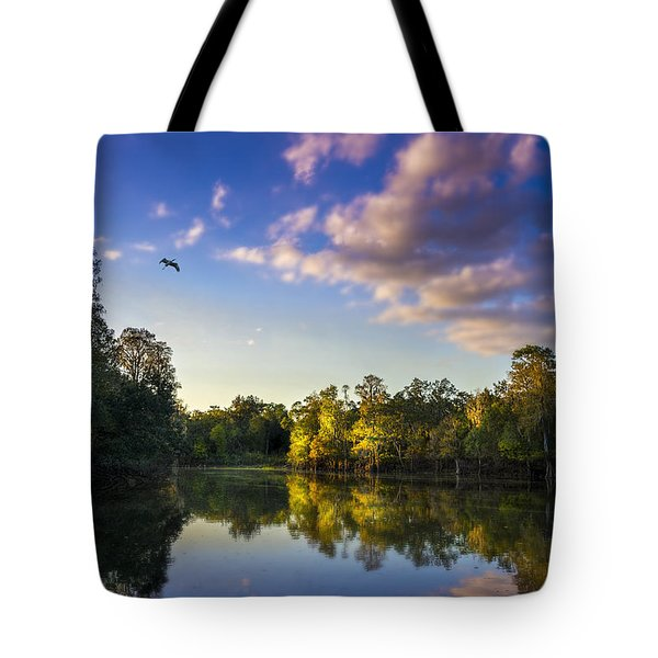 Hidden Light Tote Bag