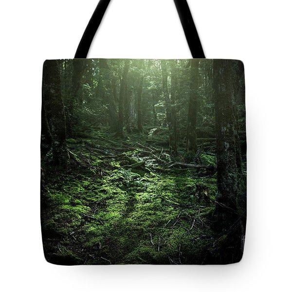 Hidden Places Tote Bag