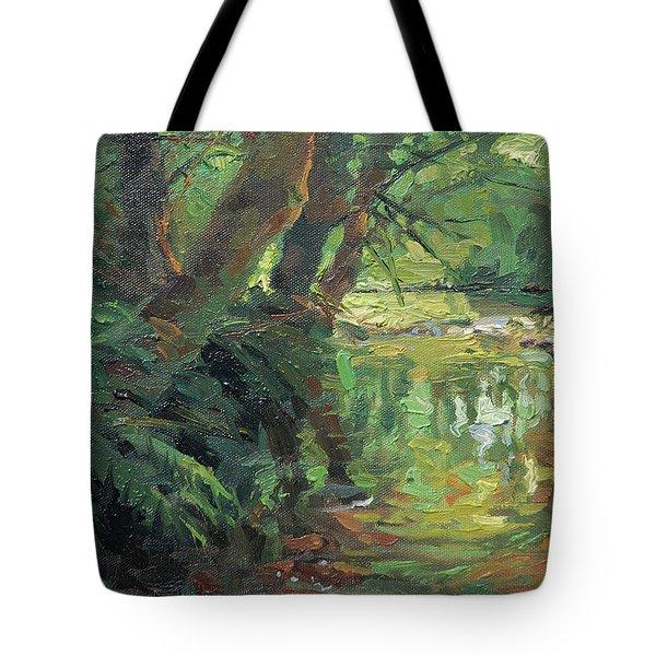 Hidden Stream Tote Bag
