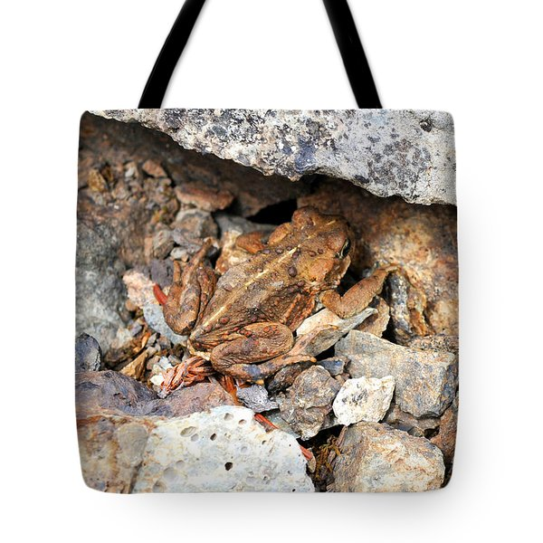 Tote Bag featuring the photograph Hidden Toad by Rebecca Parker