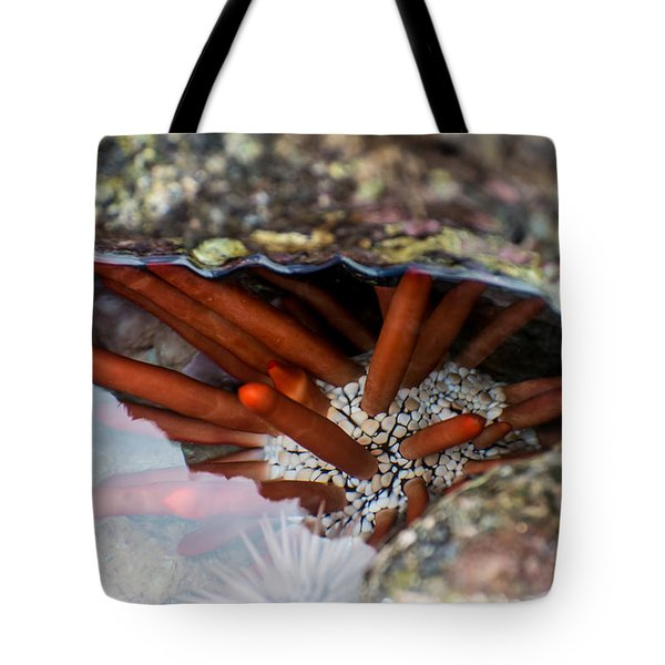 Tote Bag featuring the photograph Hidden Treasure by Colleen Coccia