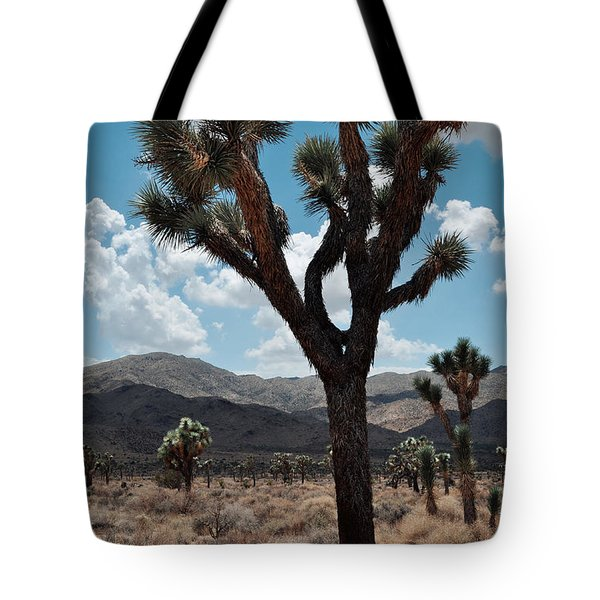 Tote Bag featuring the photograph Hidden Valley Joshua Tree Portrait by Kyle Hanson