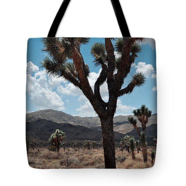 Hidden Valley Joshua Tree Portrait Tote Bag