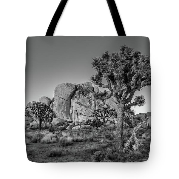 Hidden Valley Rock Tote Bag
