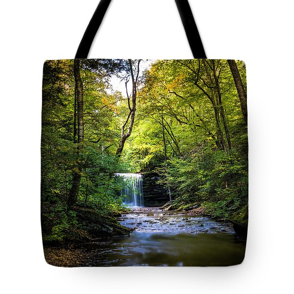 Hidden Wonders Tote Bag