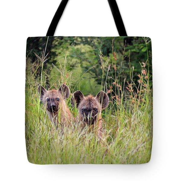 Hide-n-seek Hyenas Tote Bag