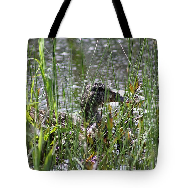 Tote Bag featuring the photograph Hiding by E B Schmidt
