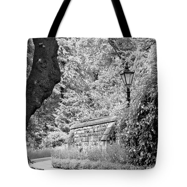 Hiding In Black And White. Tote Bag