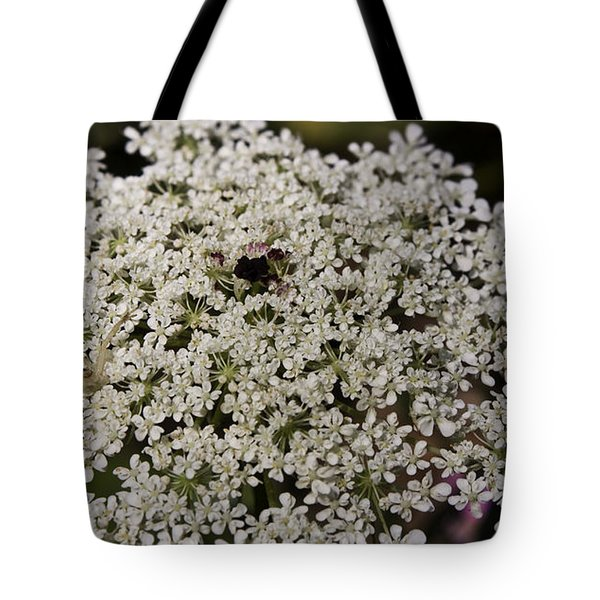 Hiding In The Lace Tote Bag by Teresa Mucha