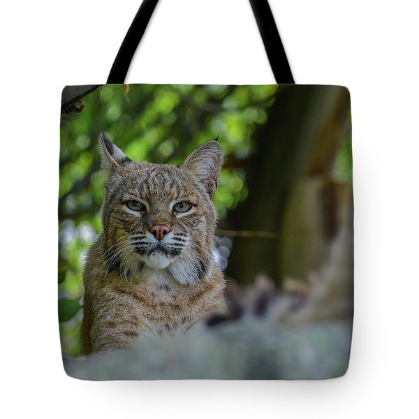 Hiding In The Rocks Tote Bag
