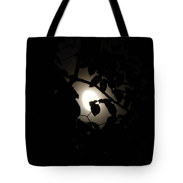 Tote Bag featuring the photograph Hiding - Leaves Over Moon by Menega Sabidussi