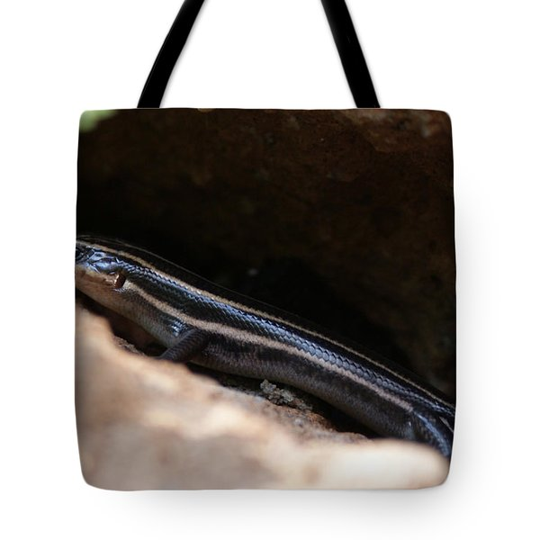 Hiding Out Tote Bag by Shelley Jones