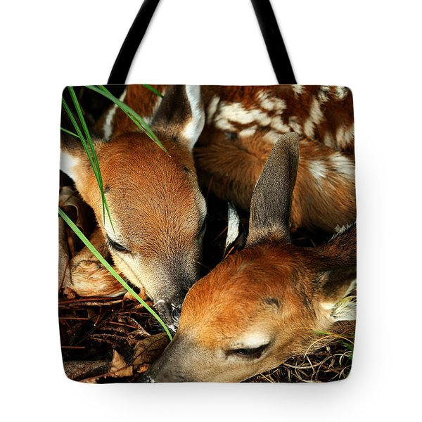 Hiding Twin Whitetail Fawns Tote Bag