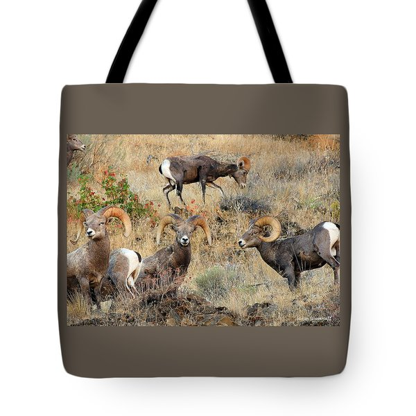 Hierarchy Tote Bag by Steve Warnstaff