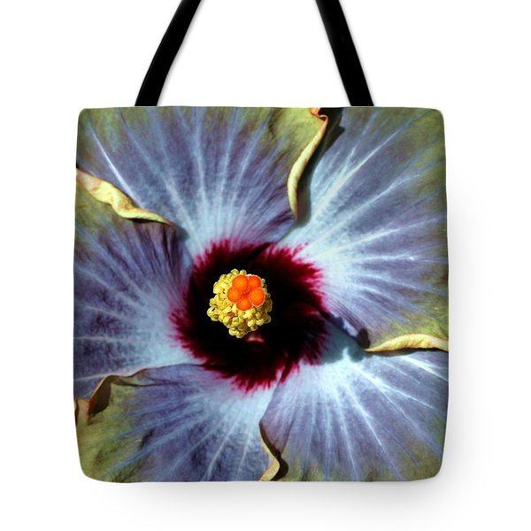 Hieroglyphics Of Nature Tote Bag by Mitch Cat