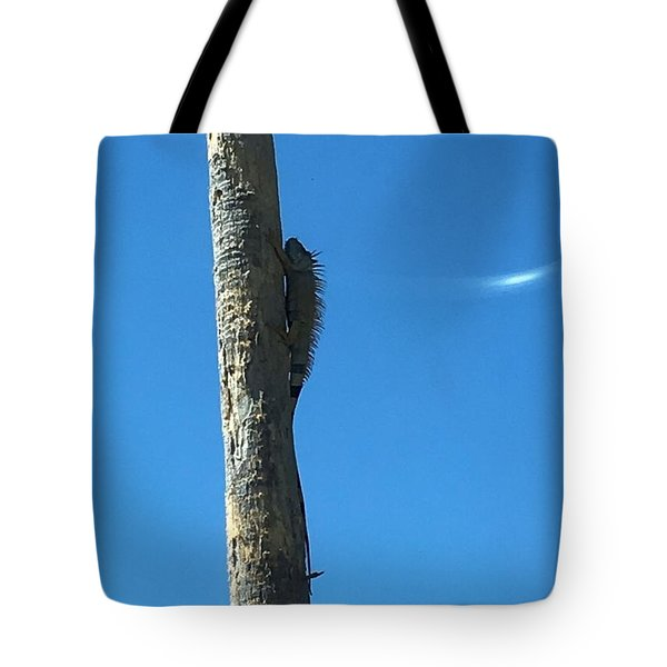 Tote Bag featuring the photograph High And Feeling Safe by Cindy Charles Ouellette